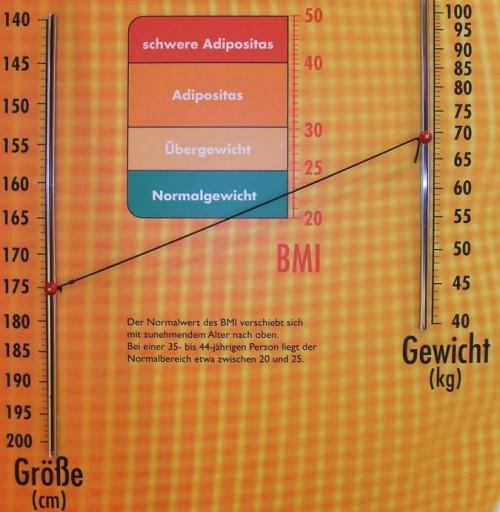 理想体重はいったい何kg?其の参:BMIのツッコミどころ